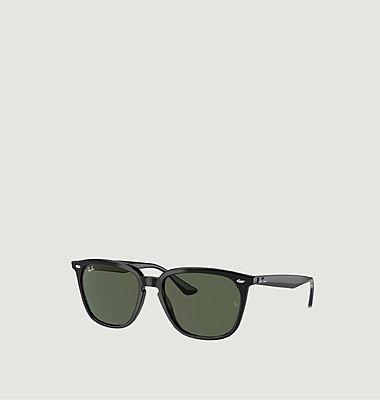 Sunglasses 4362