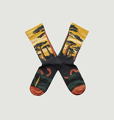 Chaussettes Baobab Bouton d'or