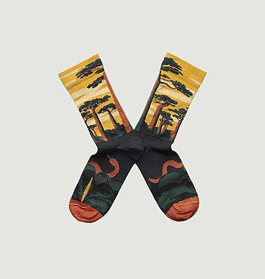 Baobab Buttercup Socks