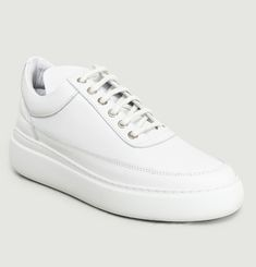 Angelica Aedan Low Top Trainers