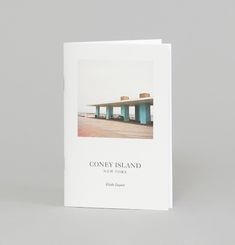 Album Coney Island