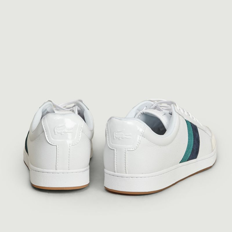 Sneakers Carnaby Ace - Lacoste