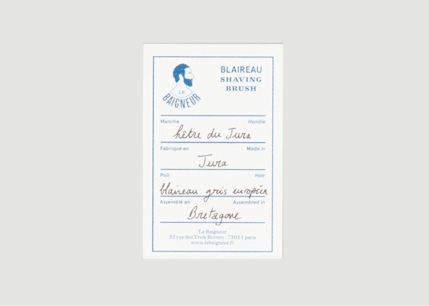 Blaireau Gris Européen - Le Baigneur