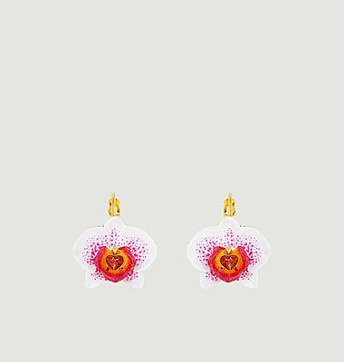Boucles d'oreilles Dormeuses Rêves d'Orchidées