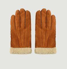 H 250 Gloves