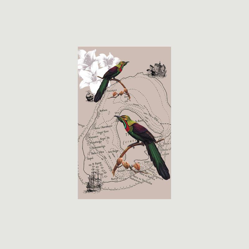 Foulard Oiseaux du Paradis - Meesha