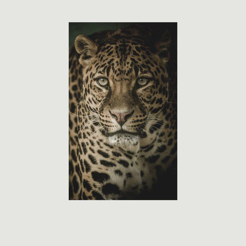 Foulard léopard en laine mérinos - Meesha