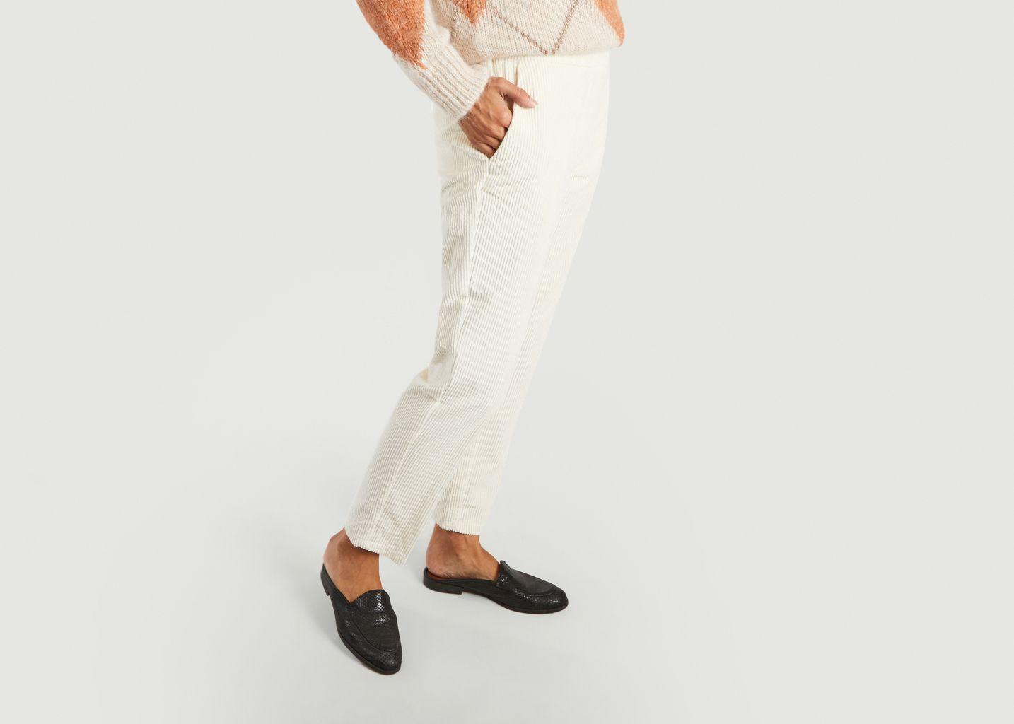 Pantalon velours Haiti - Momoni