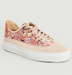 Tropical Trainers