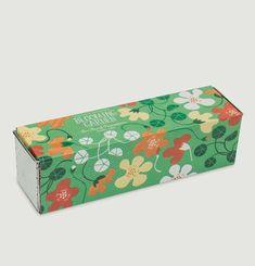 Blooming Garden - Capucines Pouce