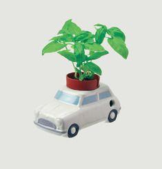 Auto Plants - Car