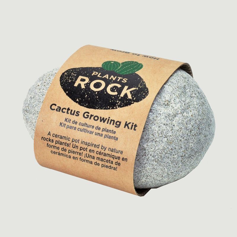 Plants Rock - Cactus - Noted