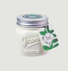 Jar Garden Basilic