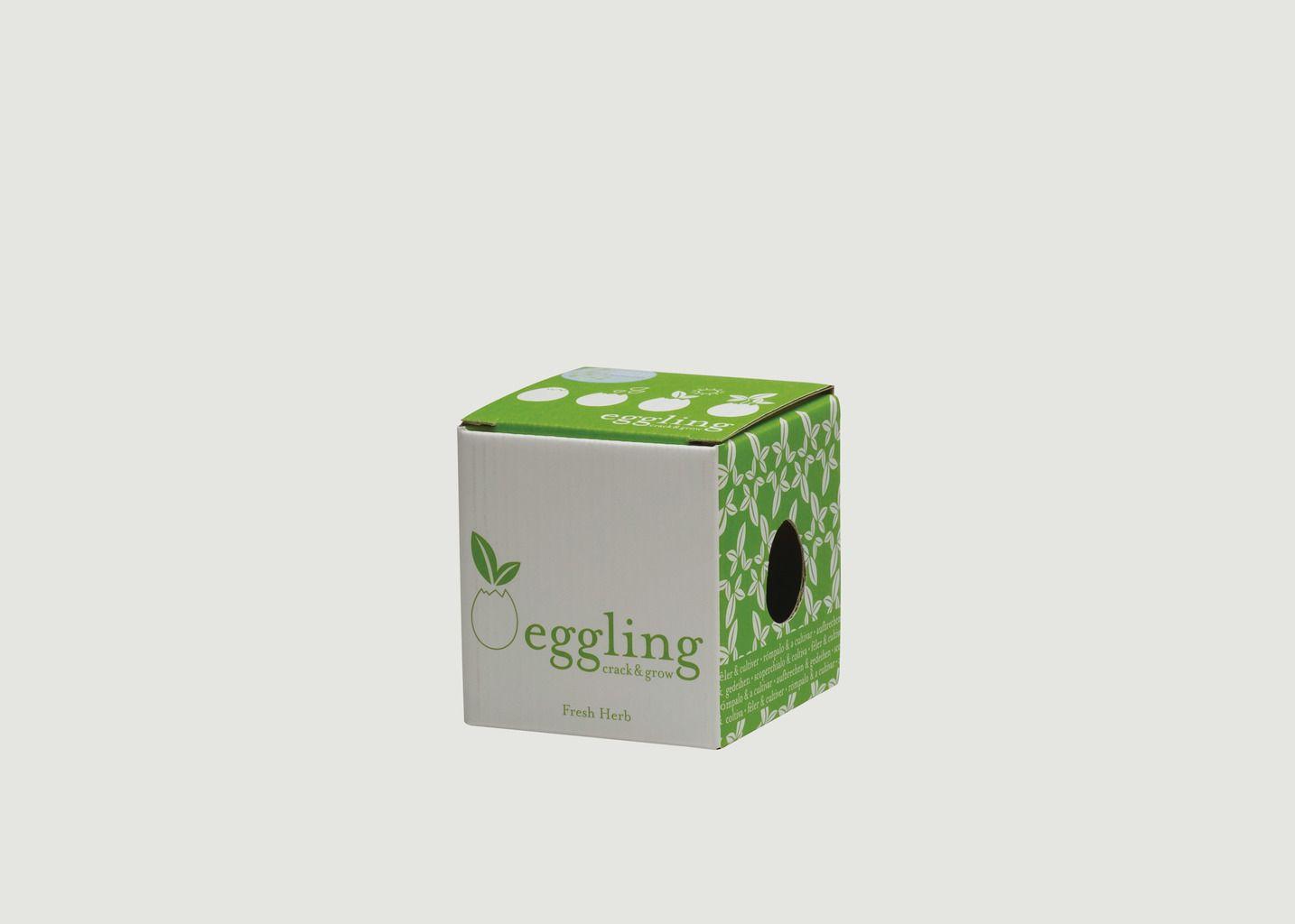 Eggling Basilic - Noted