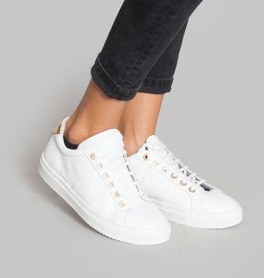 Edition 4 Sneakears