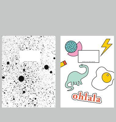 Carnets Dino + Spray