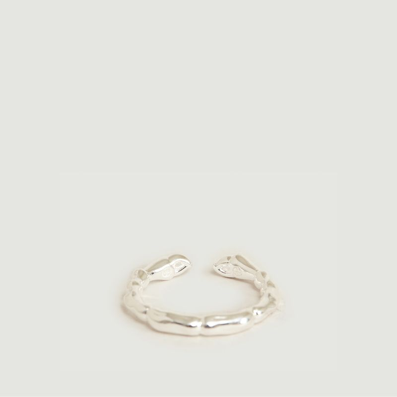 Käfer-Ring - Orner