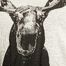 matière T-shirt Moose - Ron Dorff