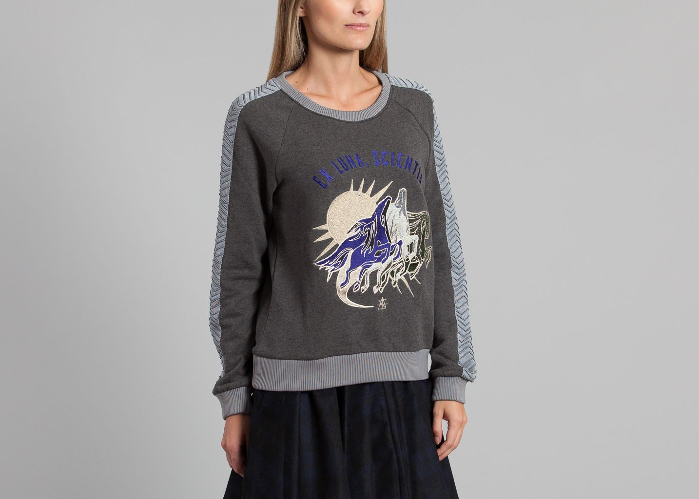 Pegasus Sweatshirt - Surface to Air