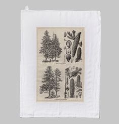 Fir Tree Tea Towel