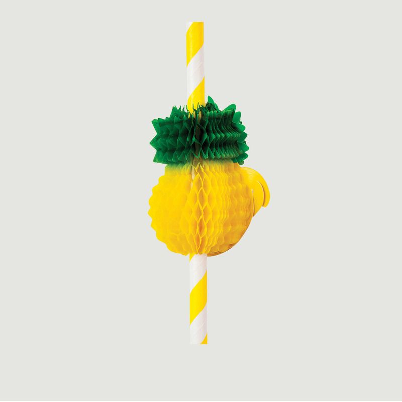 Pailles Ananas - Sunny Life