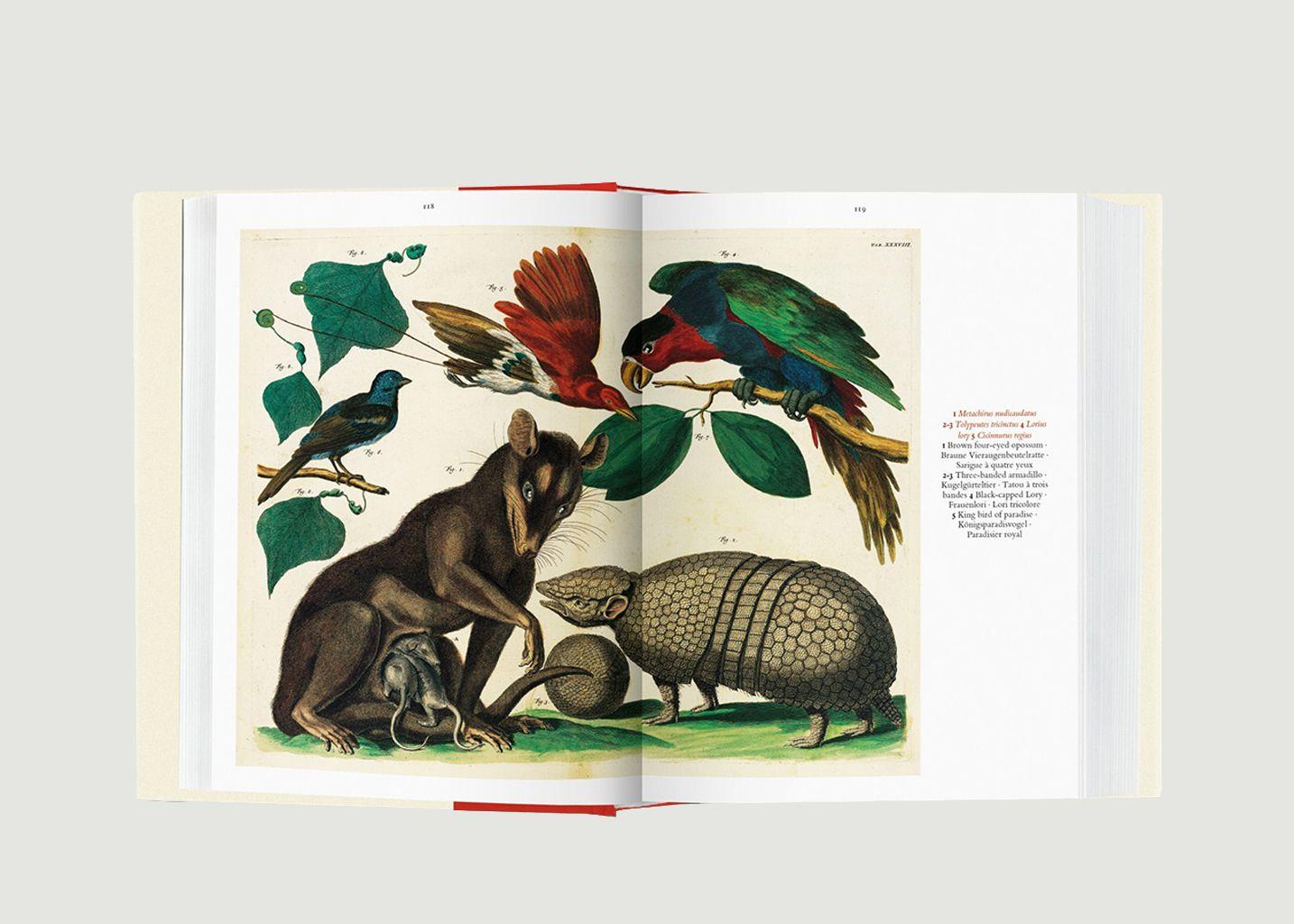 Seba. Le Cabinet des Curiosités Naturelles - Taschen