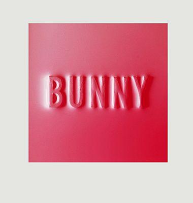 Bunny - Dear Matthew